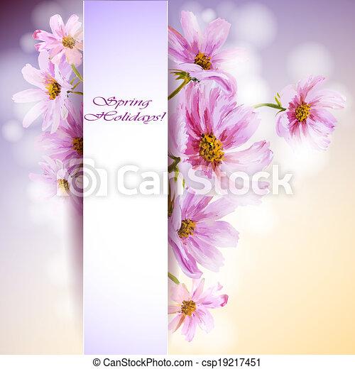 Cosmos flowers background. - csp19217451