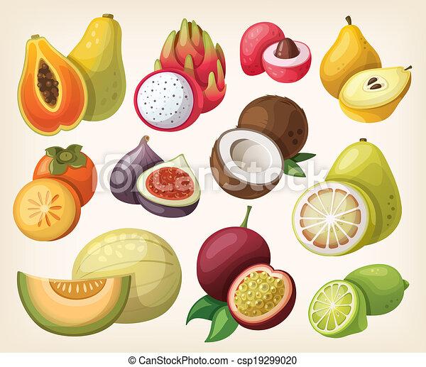 Set of exotic fruit - csp19299020