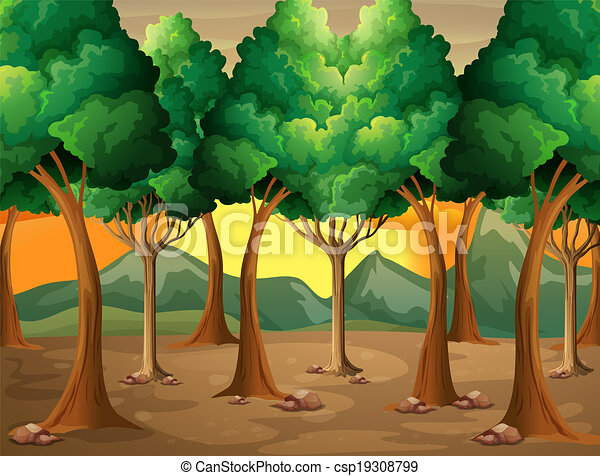 Trees at the forest - csp19308799