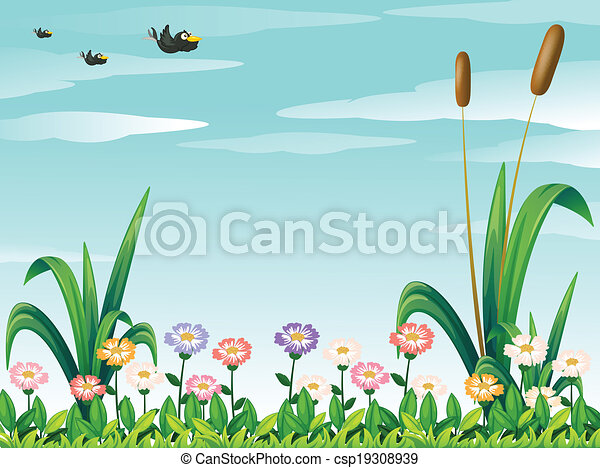 A garden with fresh flowers and the birds in the sky - csp19308939