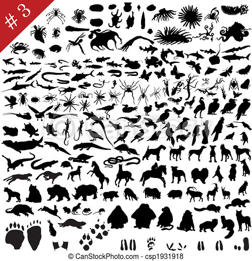 # 3 set of  different animals - csp1931918