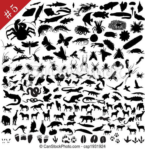 # 5 set of  different animals - csp1931924
