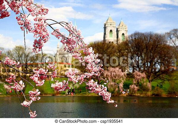 The Cherry Blossom Festival in New Jersey - csp1935541