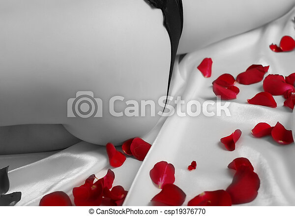 Elegant curve with rose petals