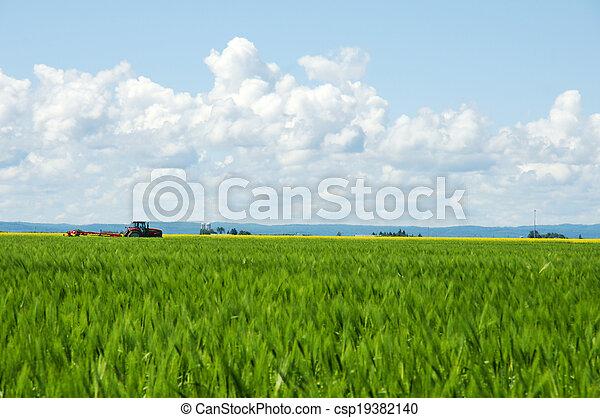 Rural life - csp19382140