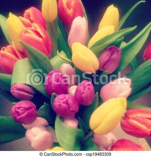 Schöne Instagram Bilder : stock fotografie von sch ne foto instagram tulpen sch ne instagram foto csp19483309 ~ Buech-reservation.com Haus und Dekorationen