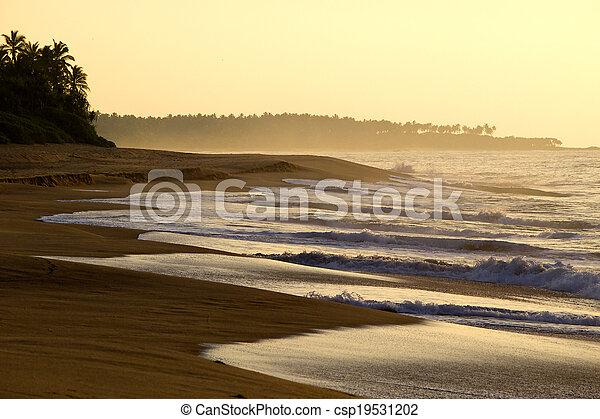 Sunrise at the beach - csp19531202
