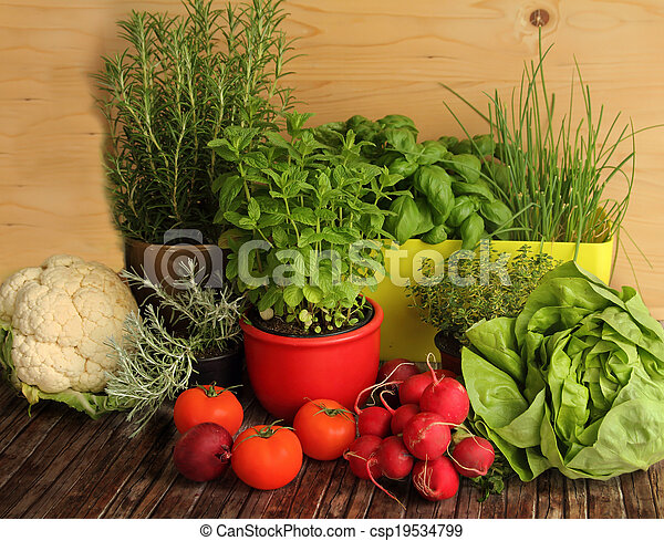 homegrown herbs and vegetables - csp19534799