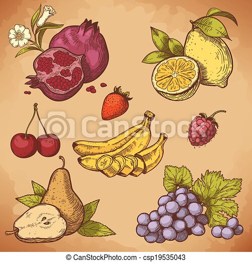 vector engraving sweet fruits - csp19535043