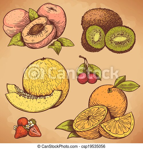 vector engraving fruits and berries - csp19535056