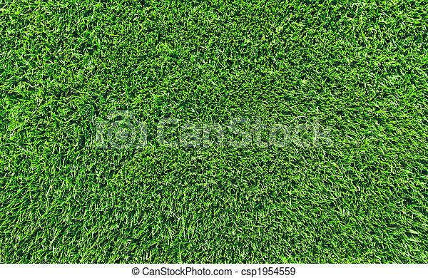 Banque de photographies de frais pelouse herbe sommet for Pelouse tarif