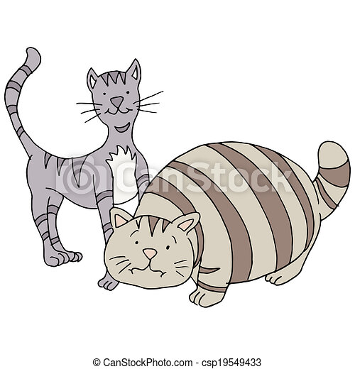Skinny Cat Drawing Fat And Skinny Cats