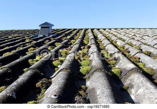 Mossy roof - csp19571685