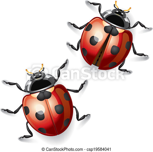 EPS Vector of vecteur, Coccinelles, Illustration - Coccinelles ...