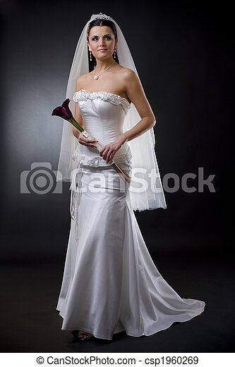 Bride in wedding dress - csp1960269