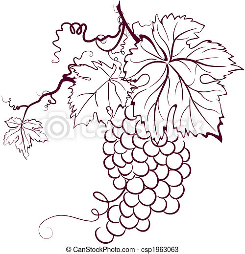 Grapes With Leaves - csp1963063
