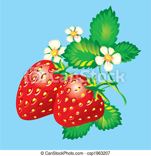 Strawberries - csp1963207