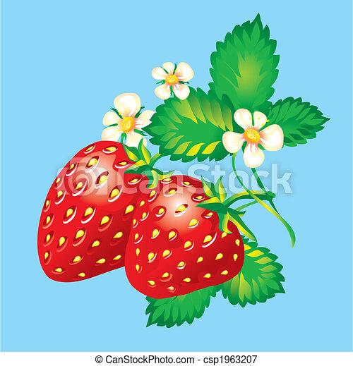 Strawberries - csp1963207