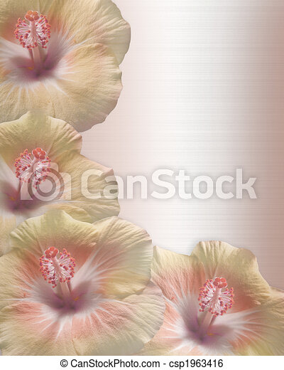 Wedding or Party Invitation Hibiscus - csp1963416