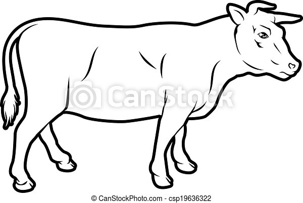 Illustration vecteur de boeuf vache illustration une - Dessin d une vache ...