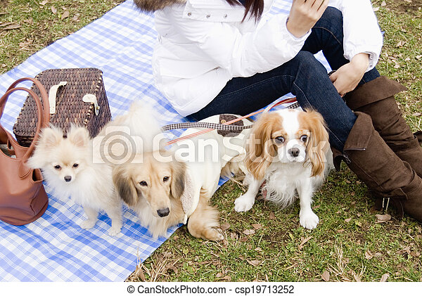three dogs and woman
