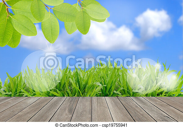 Ecology concept, fresh green field and blue sky in summer