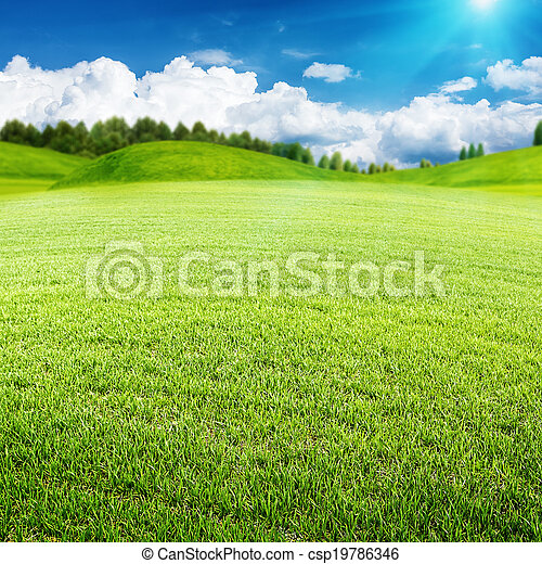 Summer meadow. Abstract environmental landscape for your design - csp19786346