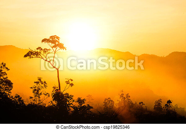 Sunrise at the fog mountains in the summer. - csp19825346
