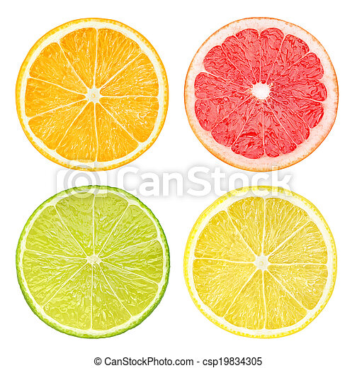 Slices of citrus fruits - csp19834305