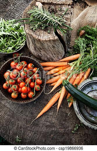 Vegetables - csp19866936