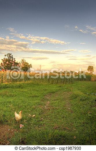 farming landscape in sunset - csp1987930