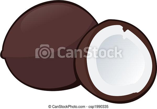 Coconut - csp1990335