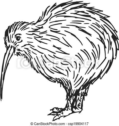 Kiwi Cartoon Drawing Hand Drawn Sketch Cartoon