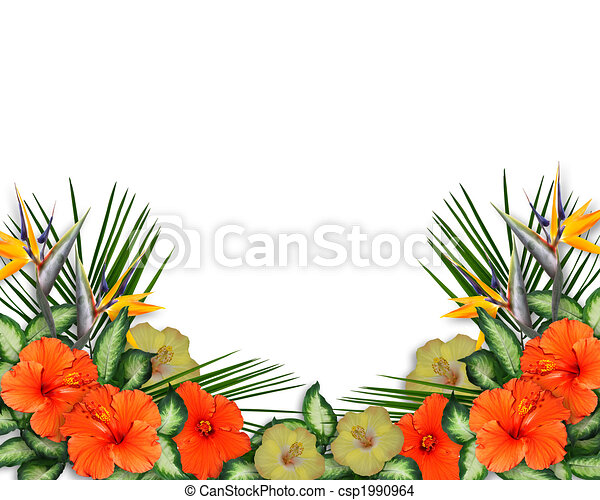 Tropical Hibiscus Flowers border - csp1990964