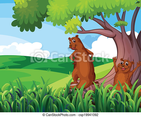 Wild animals under the tree - csp19941092