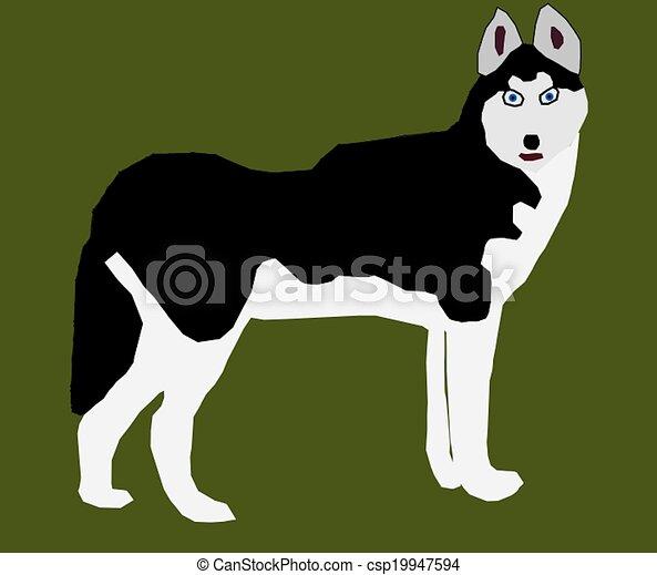 Siberian Husky - csp19947594