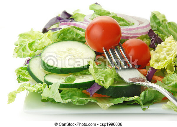 Salad with Lettuce Onion Cucumbers and Tomato - csp1996006