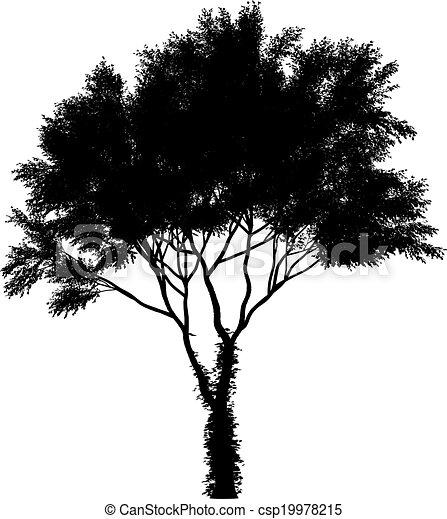 clip art vecteur de silhouette arbre isol vecteur noir fond blanc csp19978215. Black Bedroom Furniture Sets. Home Design Ideas
