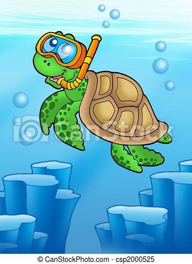 Sea turtle snorkel diver underwater - csp2000525