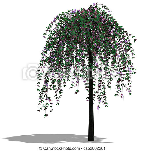 clipart de arbre render 3d 3d render de a arbre ombre et csp2002261. Black Bedroom Furniture Sets. Home Design Ideas