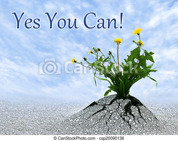 Yes You Can - csp20090136