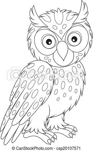 Owl - csp20107571