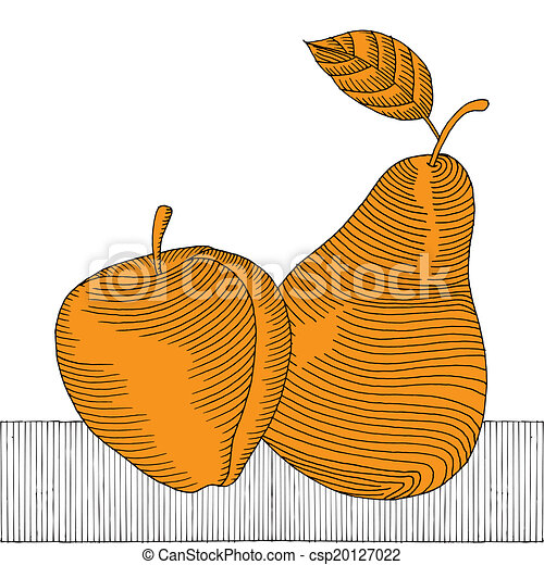 apple and pear woodcut gold  - csp20127022