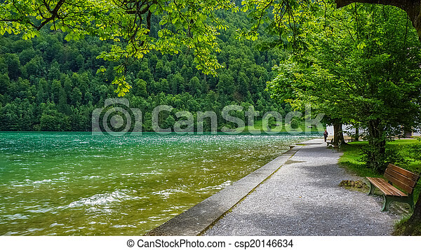 Boardwalk by a green lake - csp20146634