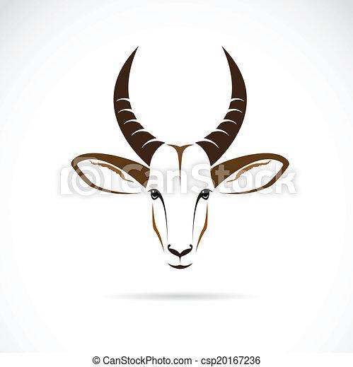 Gazelle head drawing - photo#5