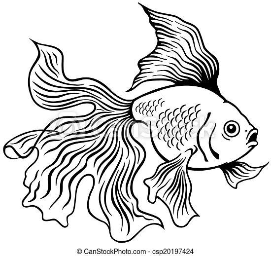 Ilustraciones de Vectores de goldfish, blanco, negro ...