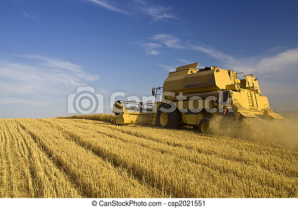 Agriculture - Combine - csp2021551