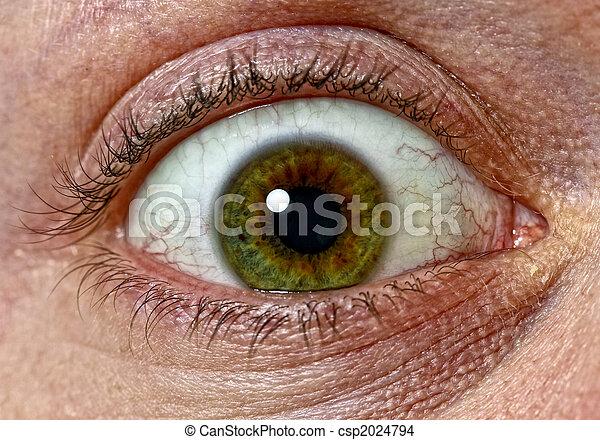 eye of fear - csp2024794