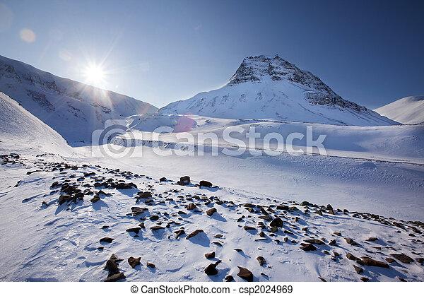 Svalbard - csp2024969