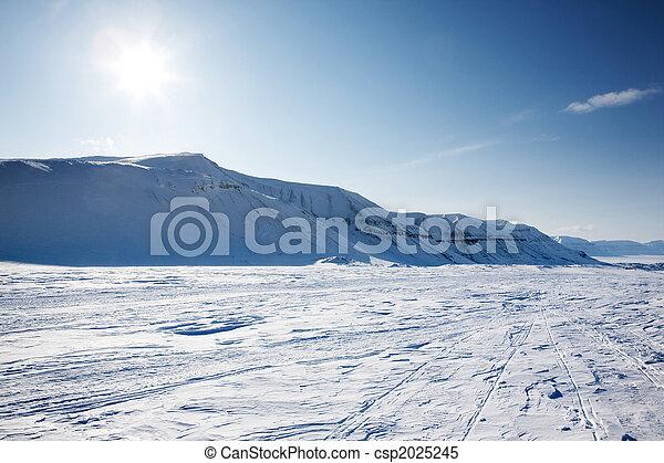 Winter Wonderland - csp2025245